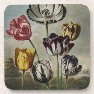 Vintage Floral Tulip Painting Coaster