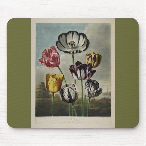Vintage Floral Tulip Painting Mouse Pads