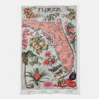 Vintage Florida Map Tea Towel