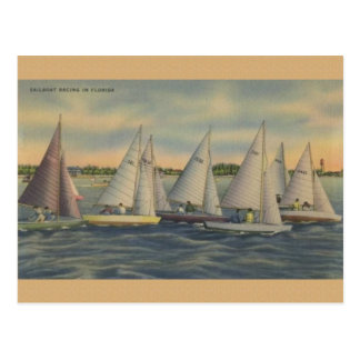 Vintage Florida Sailboat Racing Postcard