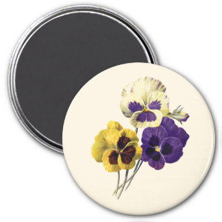 Vintage Flower Pansy Badge Magnet