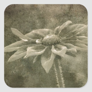 Vintage Flower Square Sticker