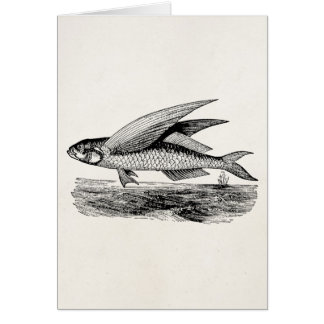 Vintage Flying Fish - Aquatic Fishes Template