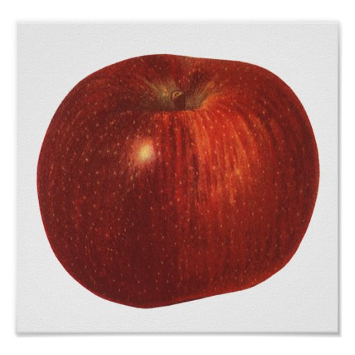 Vintage Food Fruit, Organic Red Delicious Apple Poster