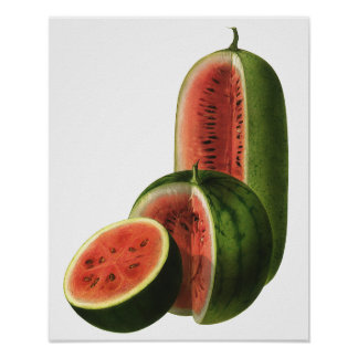 Vintage Food Fruit Organic Watermelons, Tall Round Print