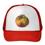 Vintage Food Fruit, Ripe Organic Peach with Leaf Cap