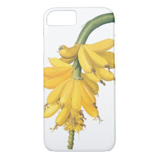 Vintage Food Fruit, Tropical Bananas by Redoute iPhone 7 Case