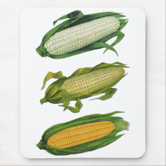 Vintage Food Healthy Vegetables, Fresh Corn on Cob Mouse Pad