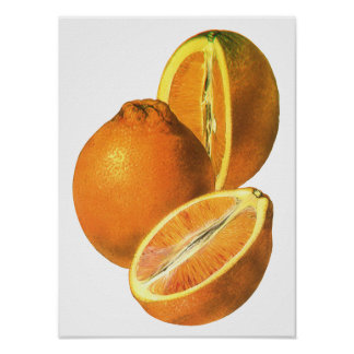 Vintage Foods, Fruit Organic Fresh Healthy Oranges Poster