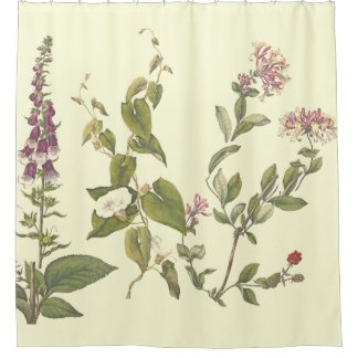 Vintage Foxglov Honeysuckle Flowers Shower Curtain