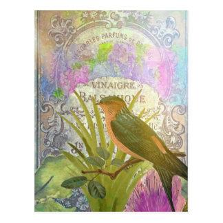 Vintage French Bird Collage Perfume Label Postcard