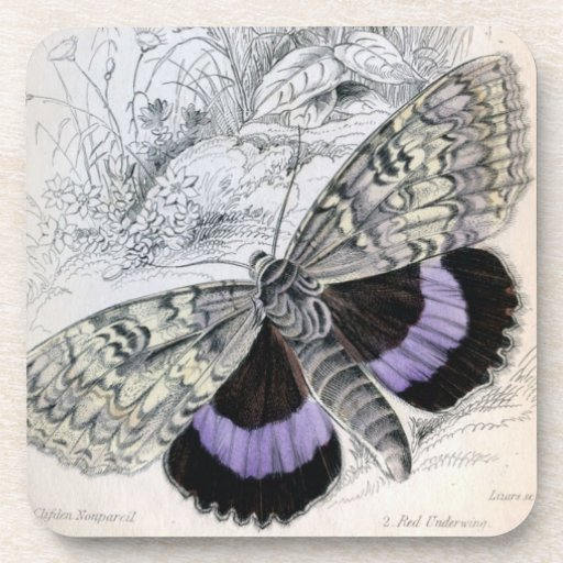 Vintage French Butterfly - cork coasters