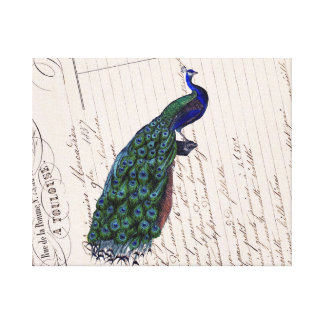 Vintage French Chic Blue Peacock Canvas Wall Art Canvas Prints
