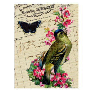 Vintage French Chic Spring Bird Collage Postcard