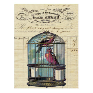 Vintage French Chic Victorian Birdcage Love Birds Postcard