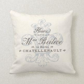 Vintage French Fleura Chatellerault Region Cushions