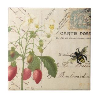 Vintage Fruit and Floral Postcard...tile Small Square Tile
