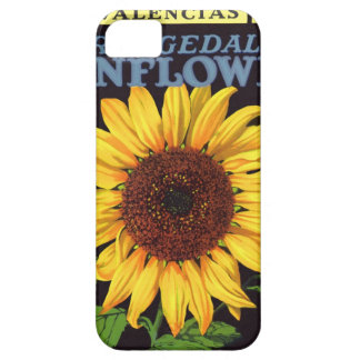 Vintage Fruit Crate Label Art Orangedale Sunflower iPhone 5 Covers
