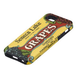 Vintage Fruit Crate Label Art, Seneca Lake Grapes iPhone 5 Case