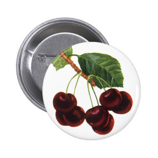 Vintage Fruit Foods, Ripe Cherries from a Tree 6 Cm Round Badge