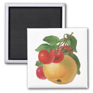Vintage Fruit Magnet