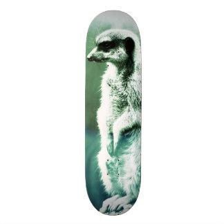 Vintage, funny meerkat skateboard deck