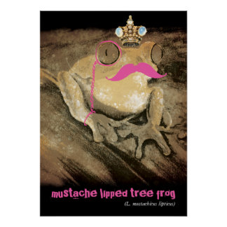Vintage funny retro mustache monocle latin frog posters
