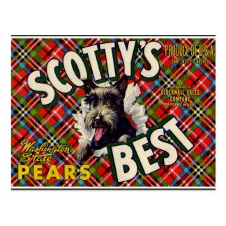 Vintage Funny Scotty Dog Plaid label- postcard