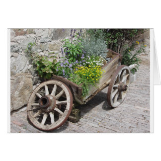 Vintage garden barrow with wild flowers and herbs card