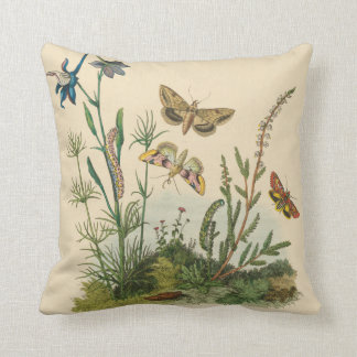 Vintage Garden Insects, Butterflies, Caterpillars Cushion
