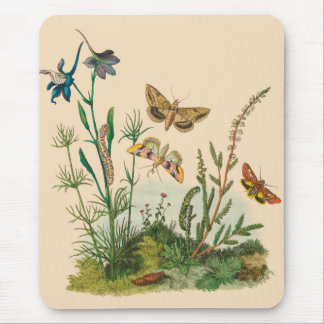 Vintage Garden Insects, Butterflies, Caterpillars Mouse Pad