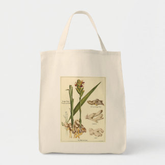 Vintage ginger illustration tote shopping bag