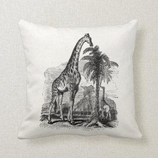 Vintage Giraffe Personalized Animal Illustration Cushion