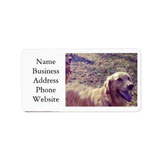 Vintage golden retriever dogs lined up address label