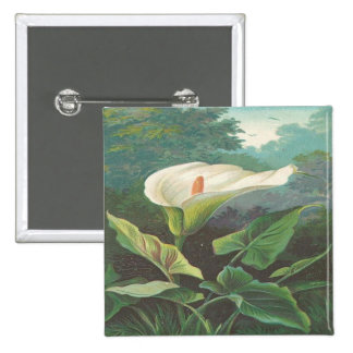 Vintage Gorgeous White Flower Pinback Button