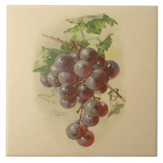 Vintage grapes large square tile