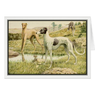 Vintage Greyhounds by Louis Agassiz Fuertes Card