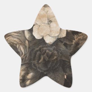 Vintage Grunge Flowers Star Sticker