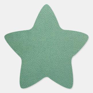 Vintage Grunge Green Leather Pattern Star Sticker