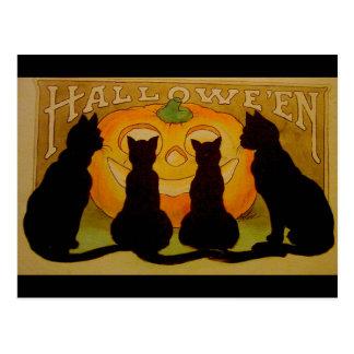 Vintage Halloween Black Cats and Jack O'Lantern Postcard