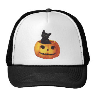 Vintage Halloween, Cute Black Cat in a Pumpkin Cap