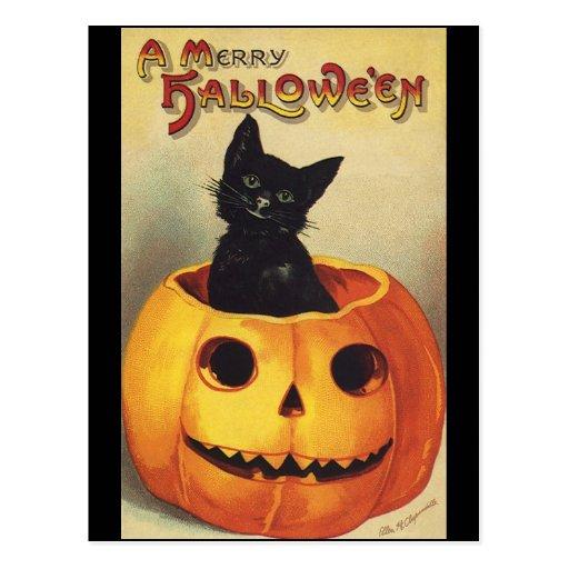 Vintage Halloween Smiling Cute Black Cat Pumpkin Postcard
