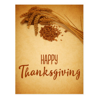 Vintage Happy Thanksgiving Wheat - Postcard