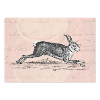 Vintage Hare Bunny Rabbit Illustration - Rabbits Business Cards