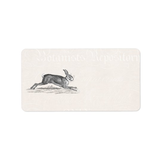 Vintage Hare Bunny Rabbit Illustration - Rabbits Label