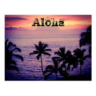 Vintage Hawaii Postcard
