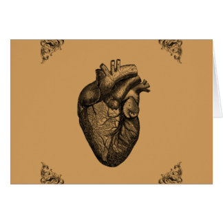 Vintage Heart Anatomy Card