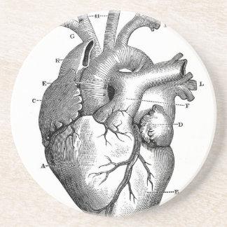 Vintage Heart Anatomy   Customizable Drink Coasters