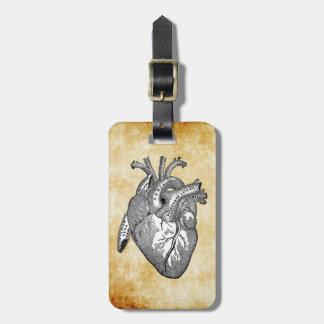 vintage heart anatomy luggage tag