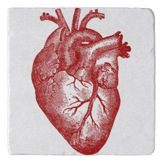 Vintage Heart Anatomy Trivet